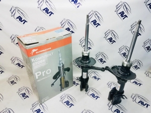 Стойки передние Alternative Pro-G ВАЗ 2190 (г/м) (2 шт.)