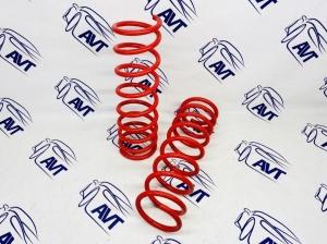 Задние пружины GT-Pro для а/м ВАЗ 2108-099, 2113-15, 2110-12, Приора, Калина, Гранта (-50 мм)